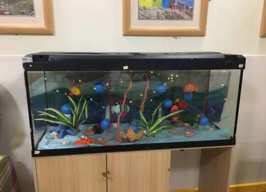 The-fish-tastic-aquarium-002
